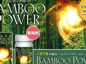 バンブーパワー(BAMBOOPOWER)の口コミ・評価・レビュー